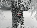 medzi-klakom-a-hnilickou-kycerou-pasovy-snehoborec-v-akcii